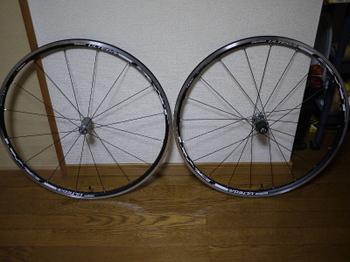 P10003311